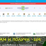 Разработка сайта служба доставки еды